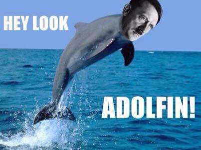 A wild adolfin appares - meme