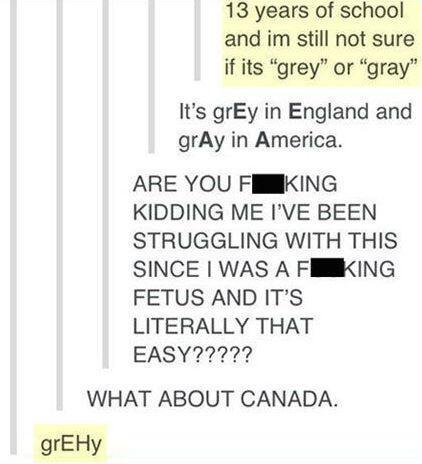 Grey or Gray? - meme