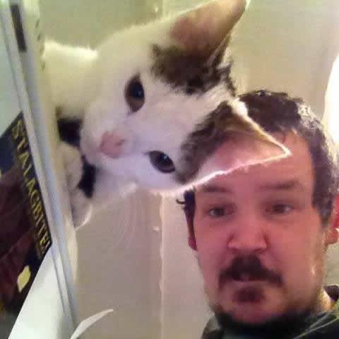 Woah.. Transparent cat - meme