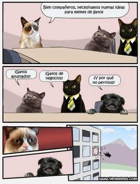 Hoie zhi :v - meme