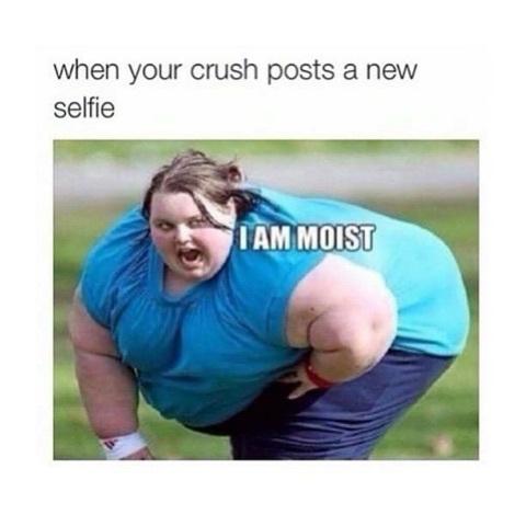 Moist - meme