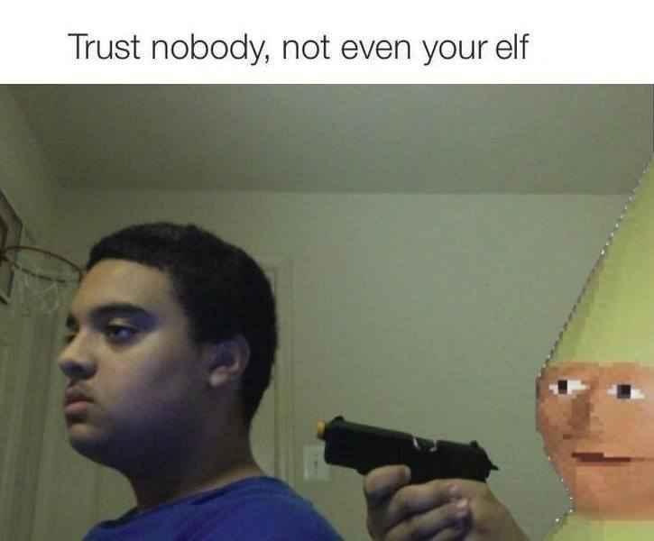 Can't  trust a elf - meme
