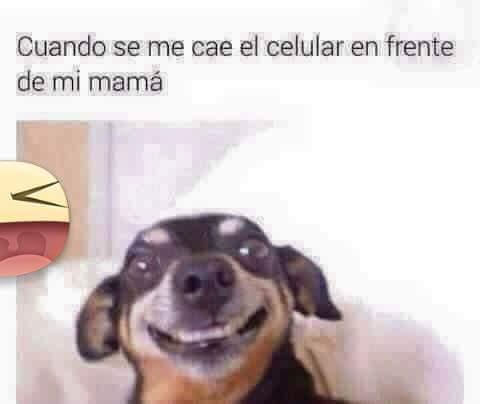 Upz - meme
