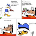 Dolan 24