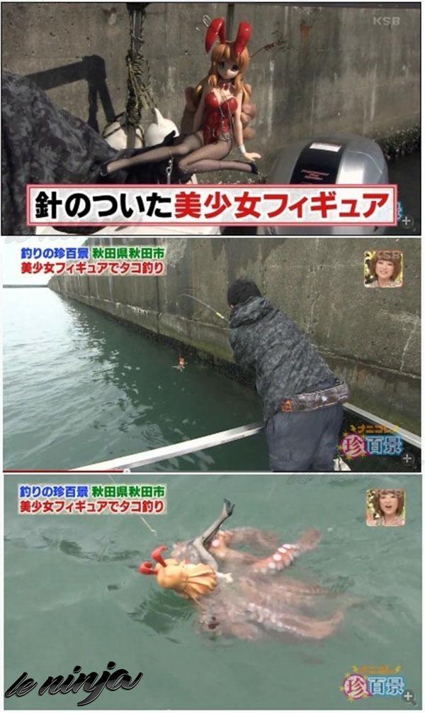 Pescaria level: asia - meme