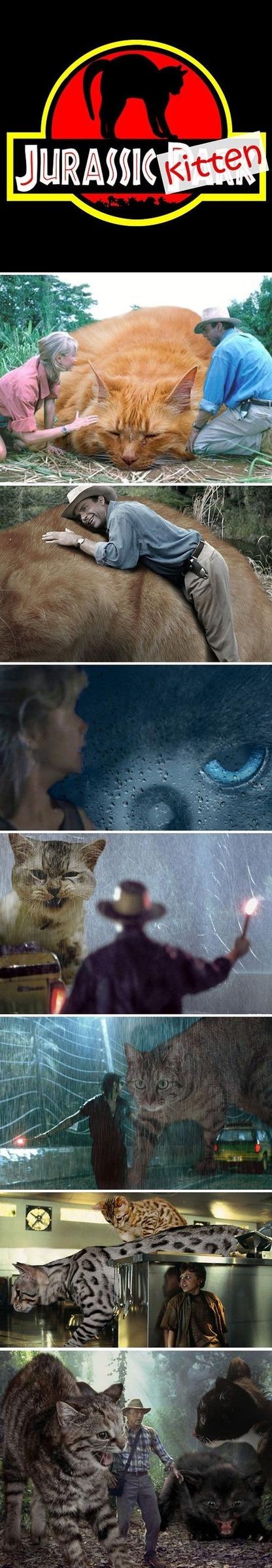 Jurassic Kitten - meme