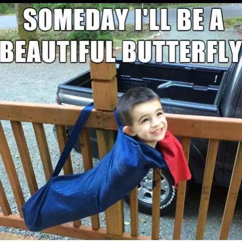 Butterflyyyy - meme