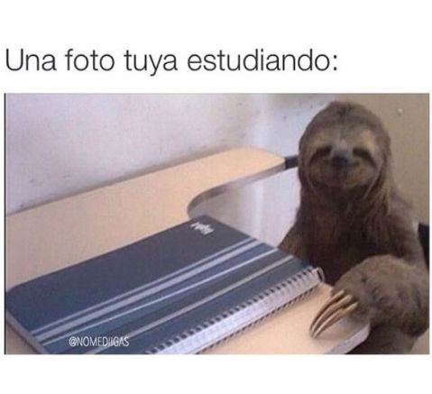 Foto tuya estudiando... - meme