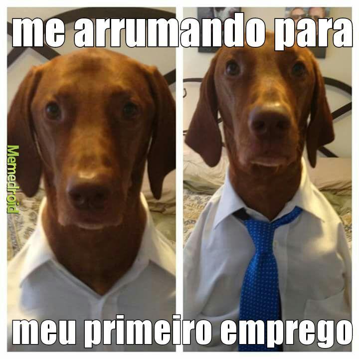 Dog chave - meme