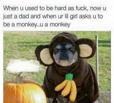 4th comment wears the monkey suit - meme