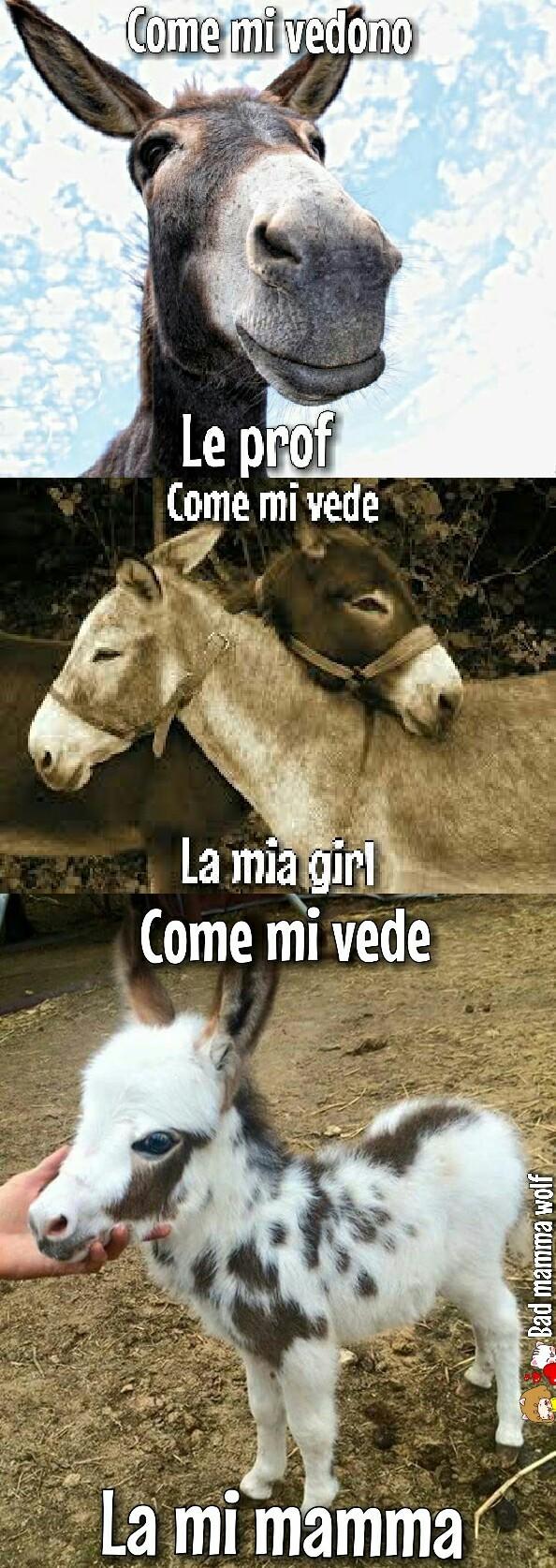"""Primo """"meme"""" di mia mamma!  Omg!"""