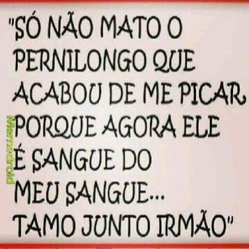#tmj irmao - meme