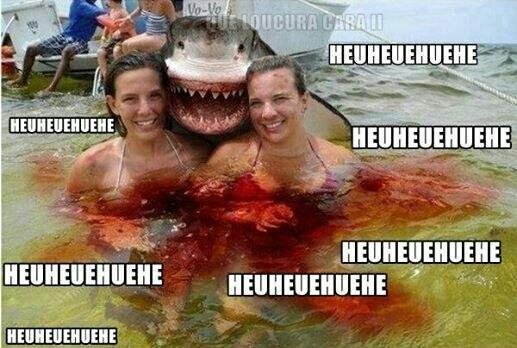 Je pense que le requin n'y est pour rien, si tu vois qu'est ce que je veux dire :megusta: - meme