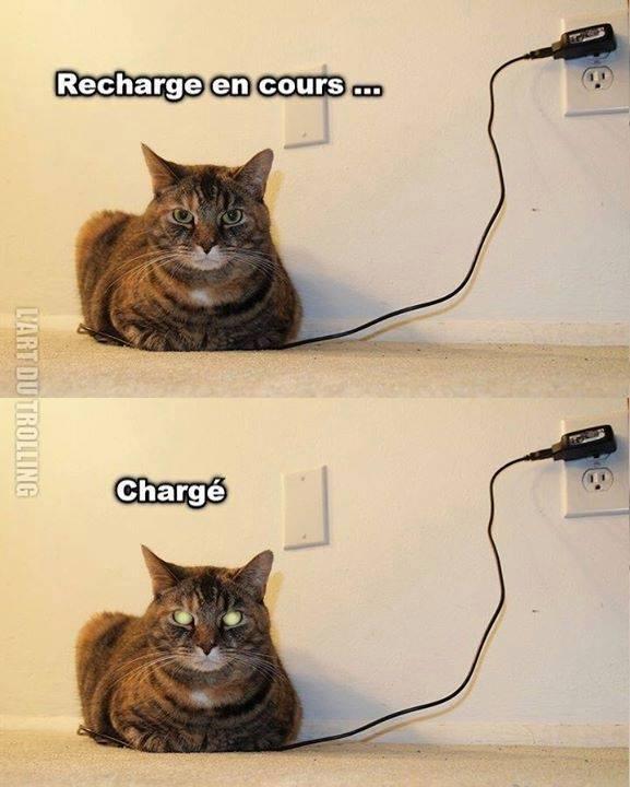 Batterie faible - meme