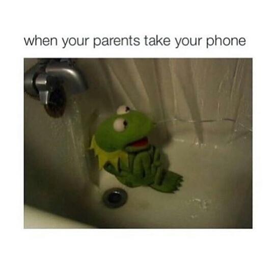My phone!!!!!!!!!!!! - meme