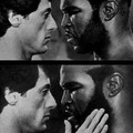 1 imagem = hetero / 2 imagem = homo