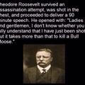 13 shots to kill a bull moose