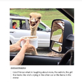 Ostrich looks like this title