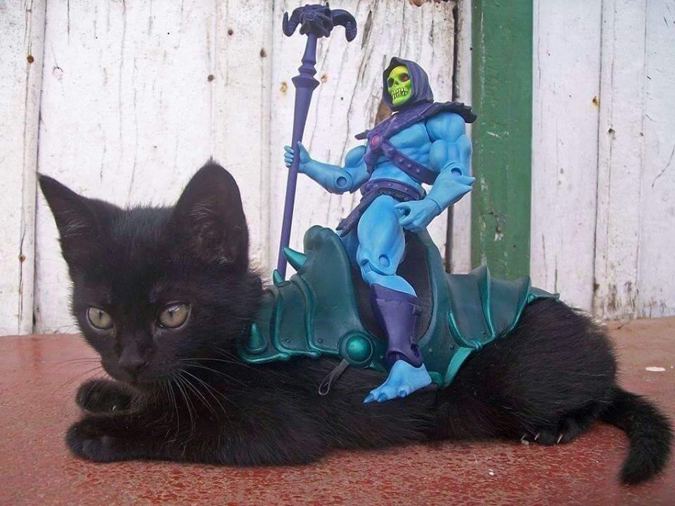 Skeletor didn't start out evil. - meme