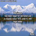 So go to Alaska and get high!
