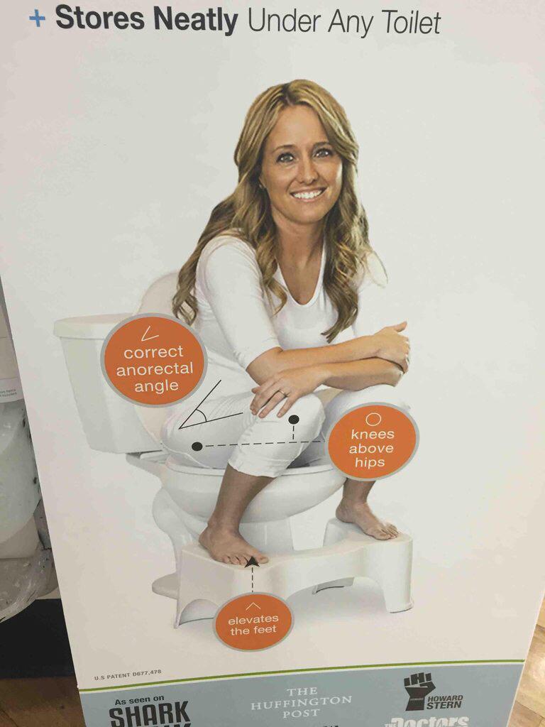 Toilet seat model - meme