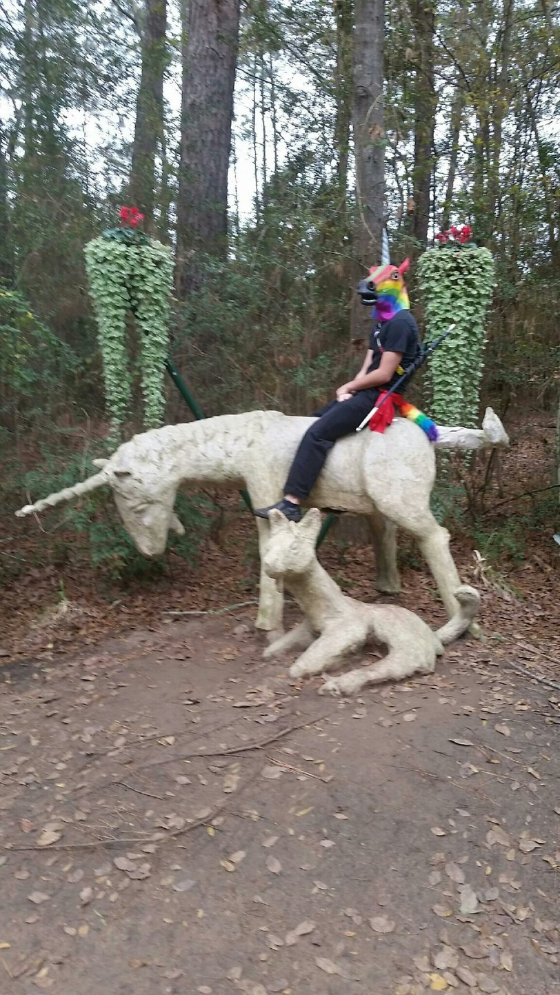 Unicorn riding a unicorn - meme