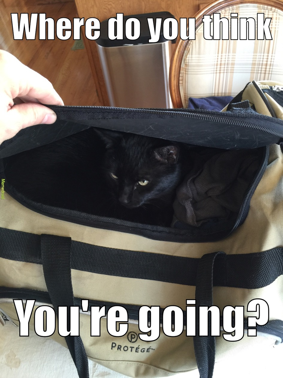 Leaving without me? - meme