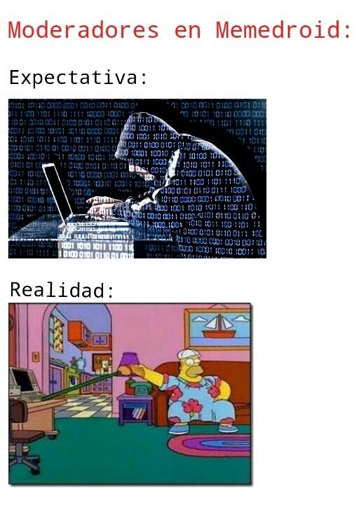 Lamentablemente cierto - meme