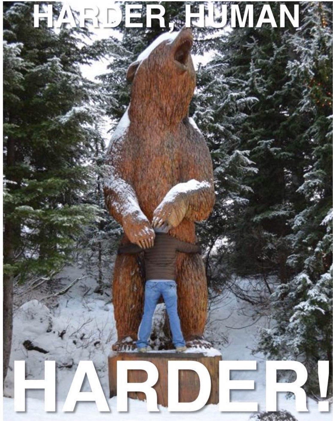 please your bear lord human - meme