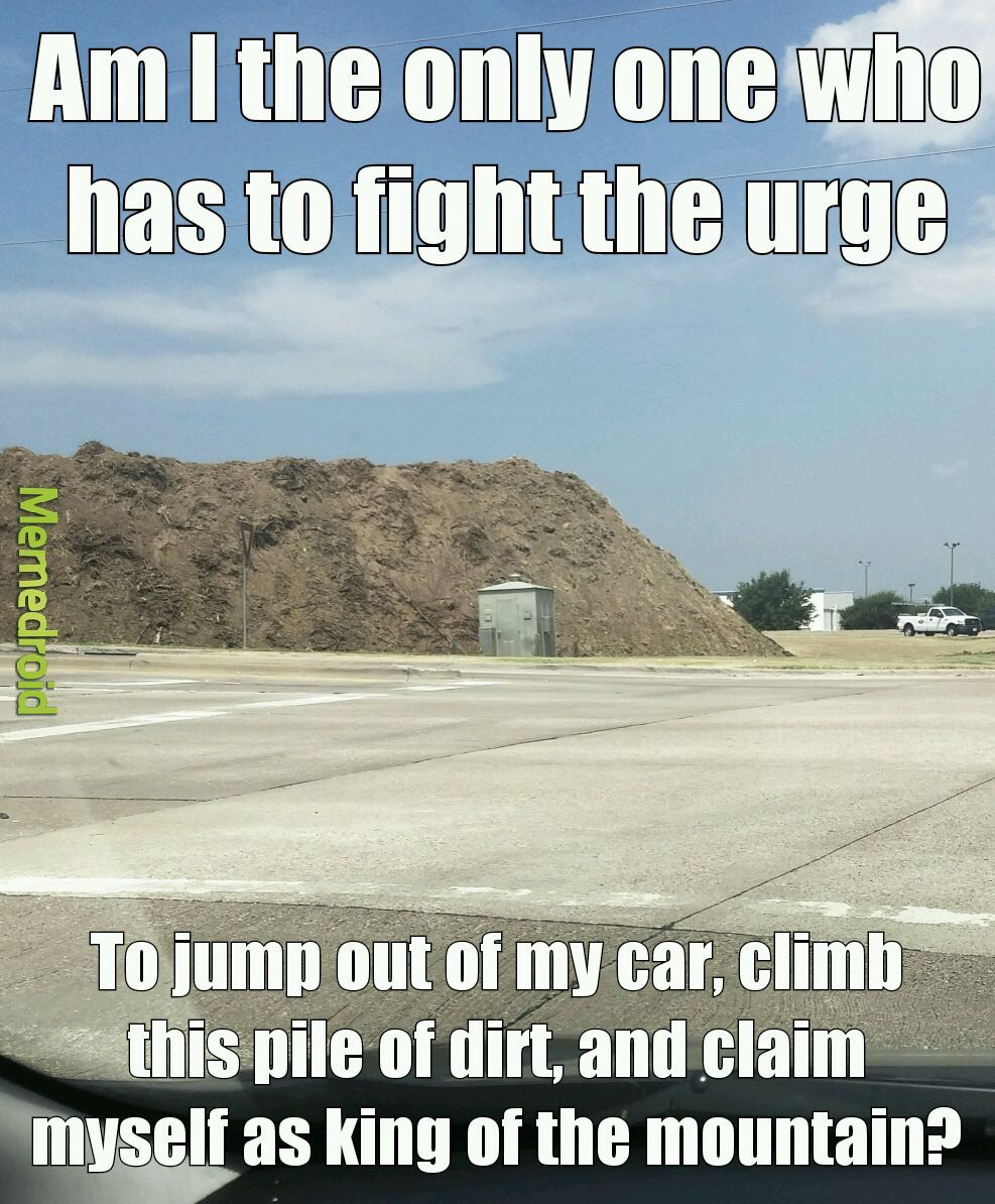 The childhood memories of shoving my brother off the top of a pile of dirt... - meme