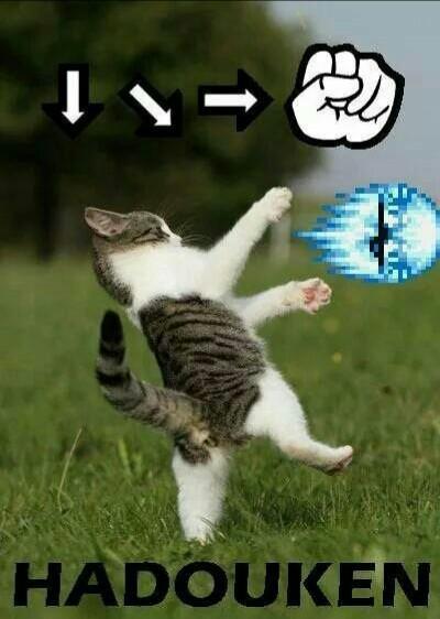 Hadouken - meme
