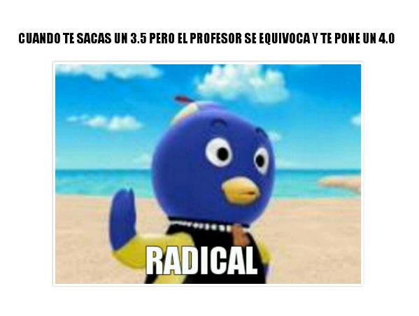 Radicaaal - meme