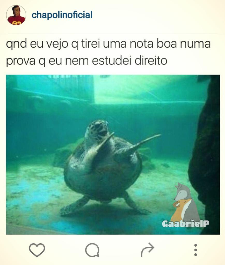 :') - meme