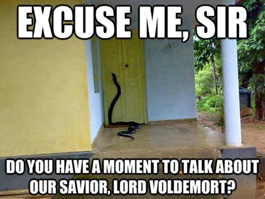 Anyone like snakes? - meme