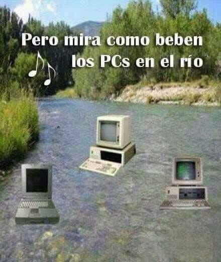 Pcs - meme