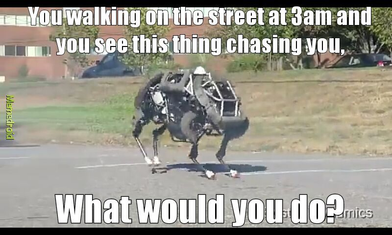Boston dynamics - meme