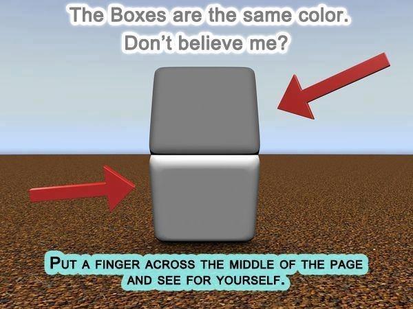 Cool Illusion! - meme