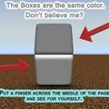 Cool Illusion!