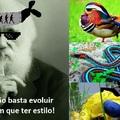 Pq sem estilo ninguem evolui!