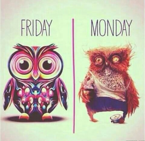 C'est chouette le vendredi! - meme