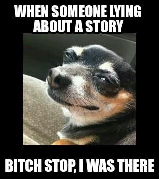 Bitch Stop - meme