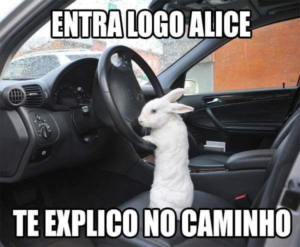 ENTRALOGO - meme