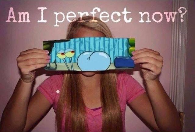 perfection - meme