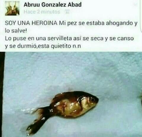 No se que es peor, que torturo al pez o que es real (mas falso que la virginidad de sasha grey) - meme