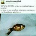 No se que es peor, que torturo al pez o que es real (mas falso que la virginidad de sasha grey)