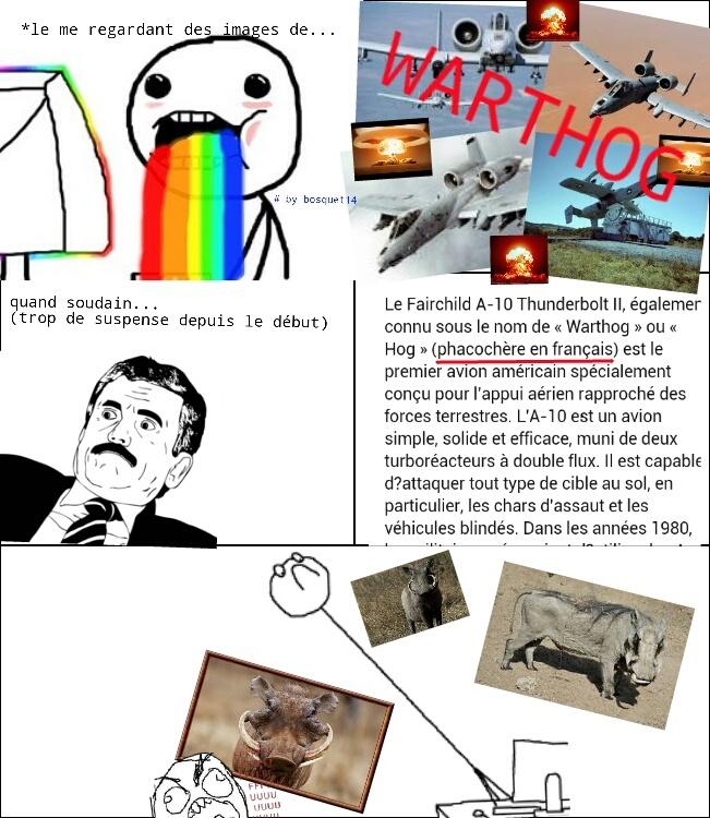 WARTHOG - meme