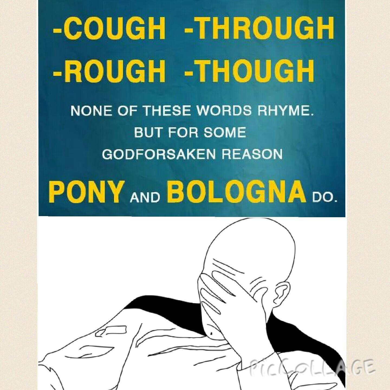 English why you no listen? - meme