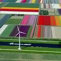 Perfection aux Pays-Bas