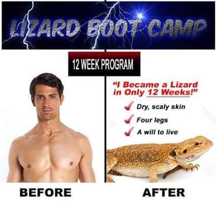 9th comment is a lizard. - meme
