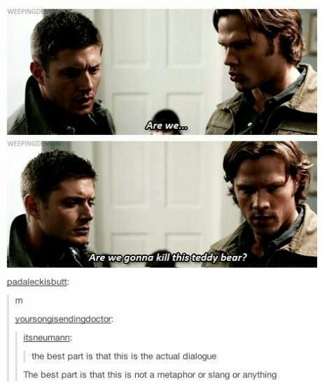 SHOIT THE DAMN THING. IF IT'S A LIVING TEDDY BEAR IT SHOULDN'T BE PERMITTED TO EXIST IN THIS SHOTTY WORLD. PEOPLE WILL EXPLOIT AND USE IT FOR HORRIBLE SEXUAL ACTS. THIS IS AN ACT OF MERCY SAM AND DEAN WINCHESTER - meme